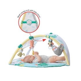 Buy Skip Hop Tropical Paradise Activity Gym & Soother online with Free Shipping at Baby Amore India, Babyamore.in